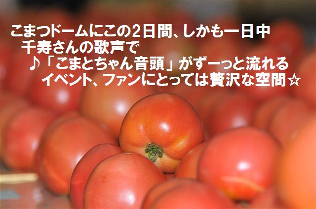 2013JAまつり (12)