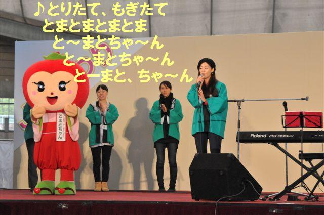 2013JAまつり (11-2)