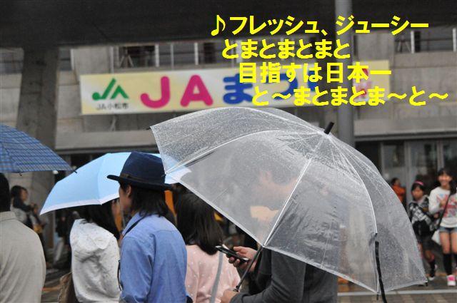 2013JAまつり (12-2)