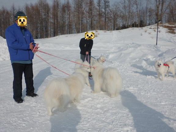 2014年2月1日橇練、ほか 018