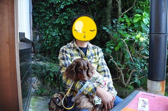 DSC_0241_201311092236373be.jpg