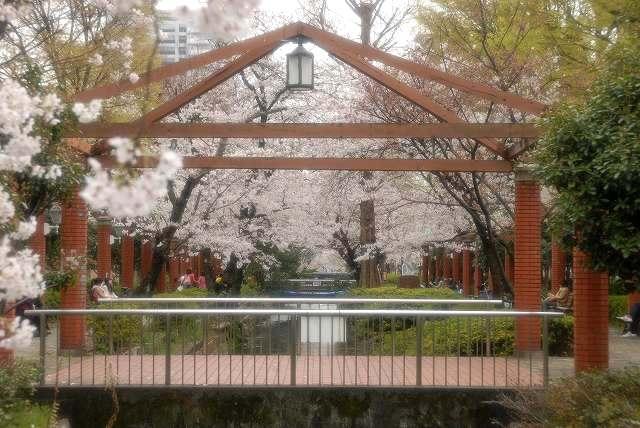 西川緑道公園8
