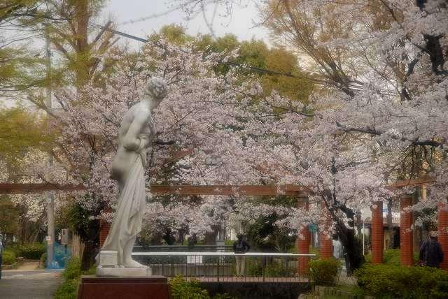 西川緑道公園10