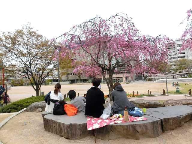 西川緑道公園17