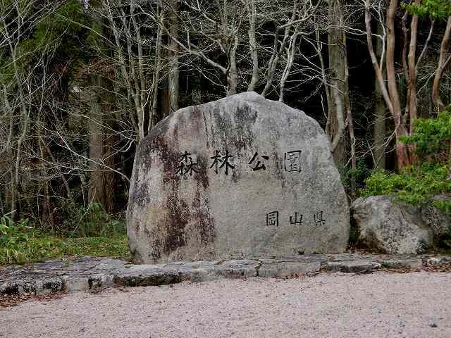 森林公園1