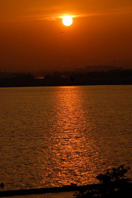 児島湖の夕陽1