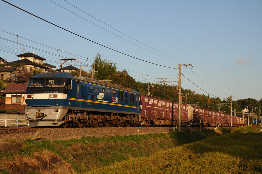 DSC_8417d.jpg