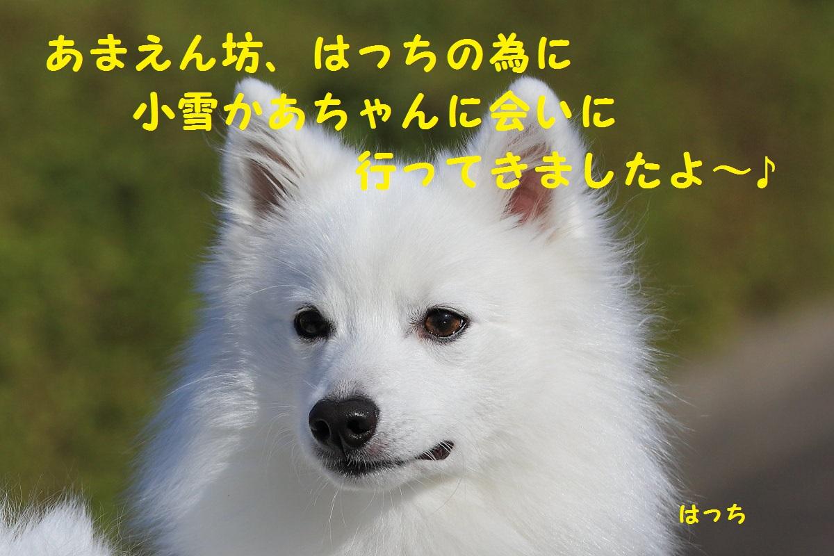 1_20131018070106436.jpg