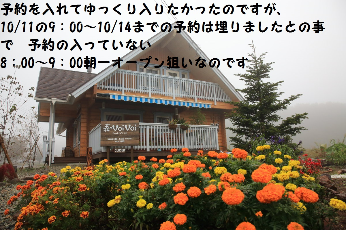 2_20131015200700b32.jpg
