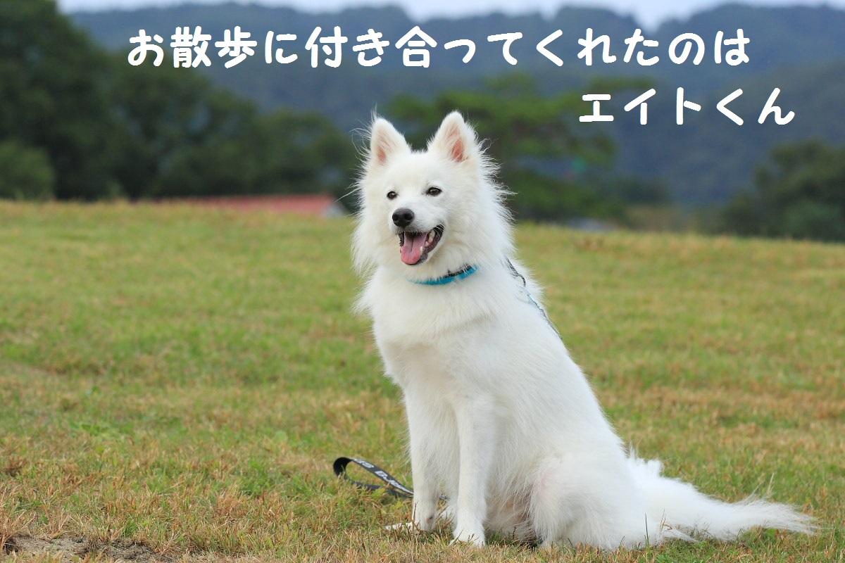 2_20131022184834dd0.jpg