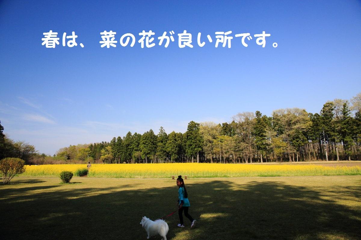 3_20131017203509323.jpg