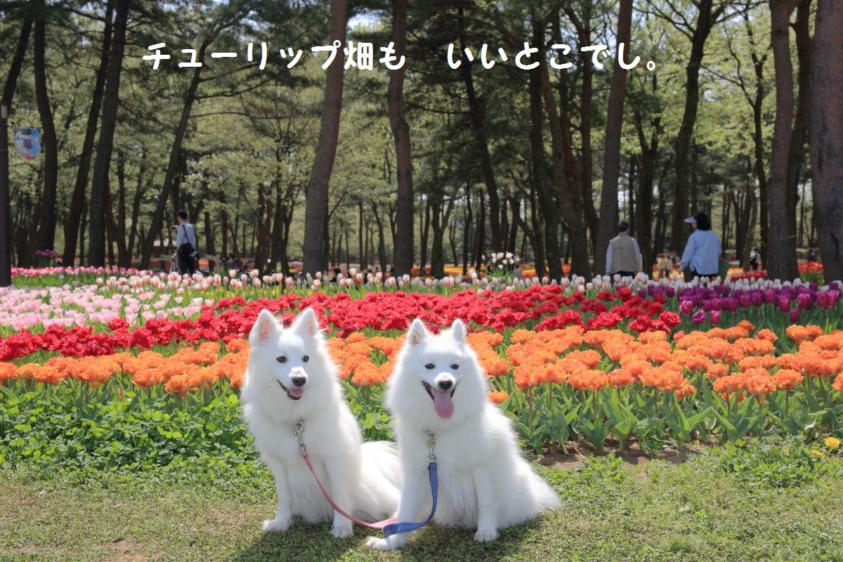 4_2013102019134976e.jpg