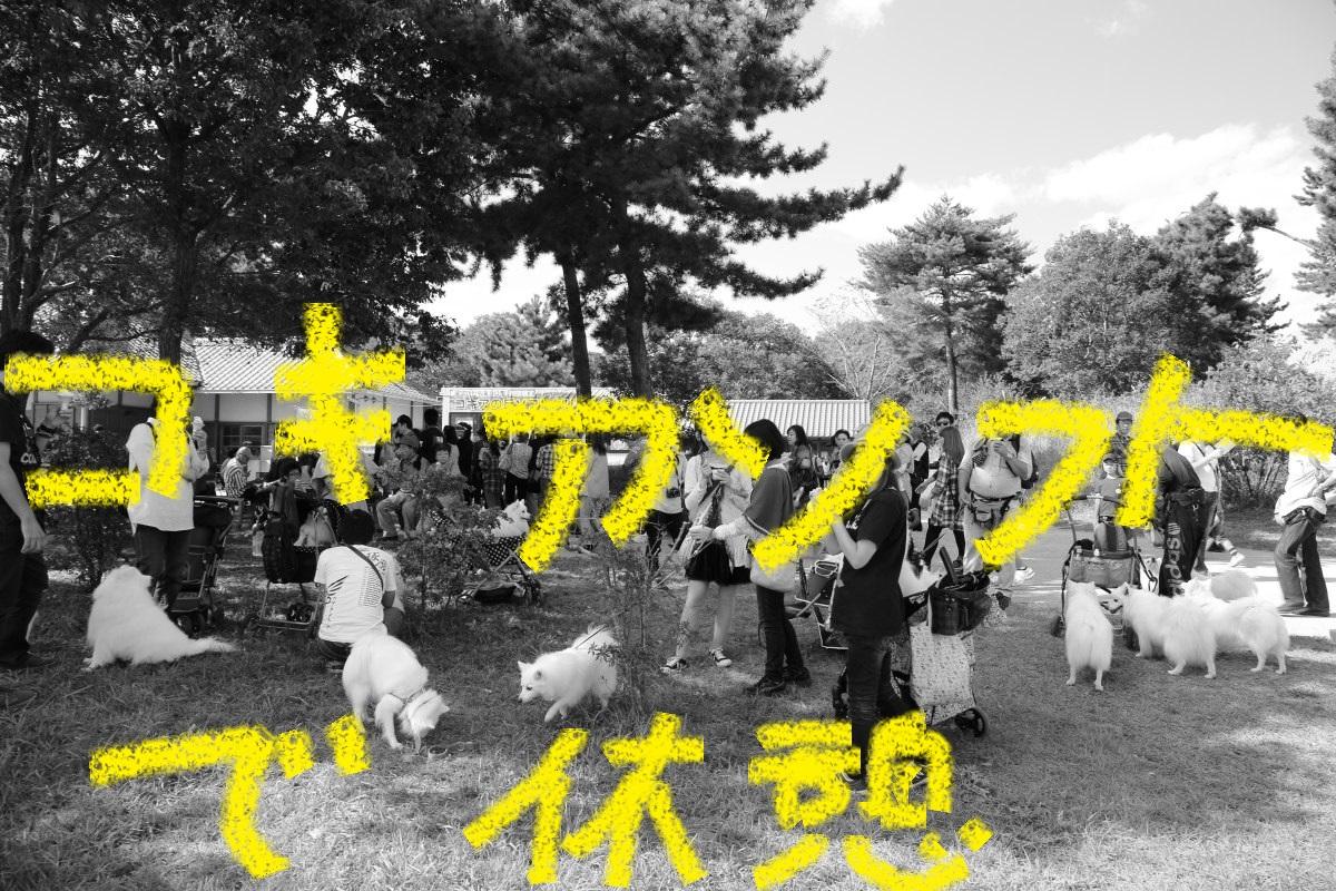 4_20131021200056660.jpg