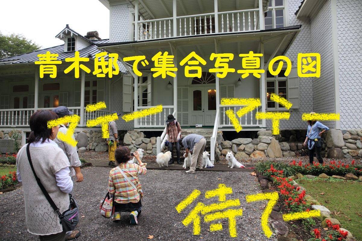 8_20131017203612457.jpg
