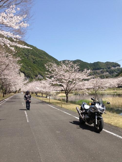 Asakura11T.jpg