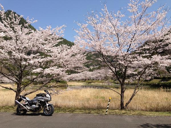 Asakura12.jpg