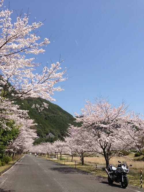 Asakura7T_20130330232827.jpg