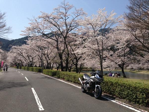Asakura9.jpg