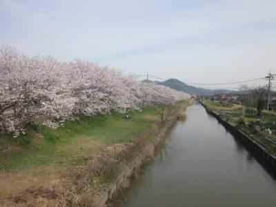 risaizu東へ2323