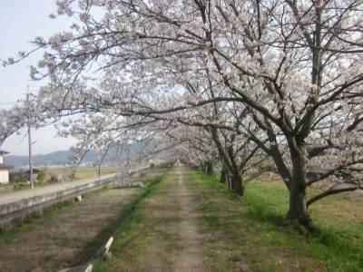 risaizuトンネル2326