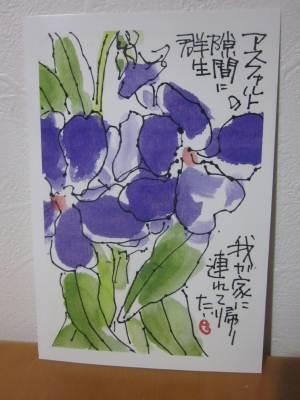 risaizuIMG_2347.jpg
