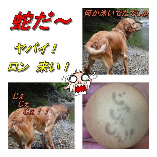 page川4