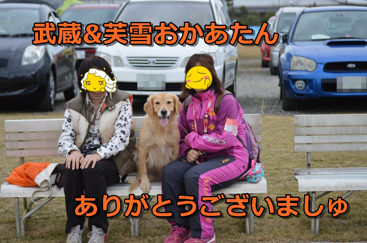 DSC_0043-003.jpg