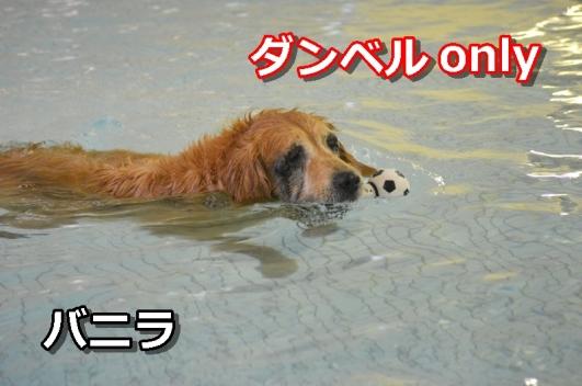 DSC_0076-076.jpg