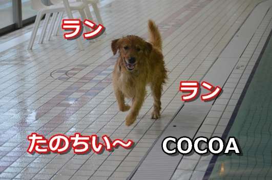 DSC_0105-105.jpg