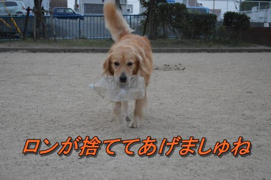 DSC_0450_2013080121495306c.jpg
