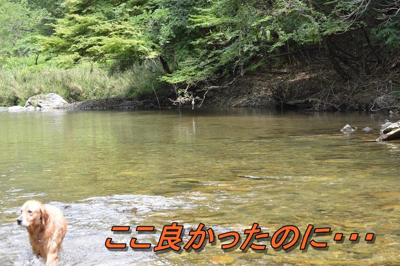 DSC_0743.jpg