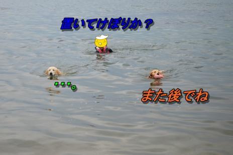 DSC_0801_20130716225226.jpg