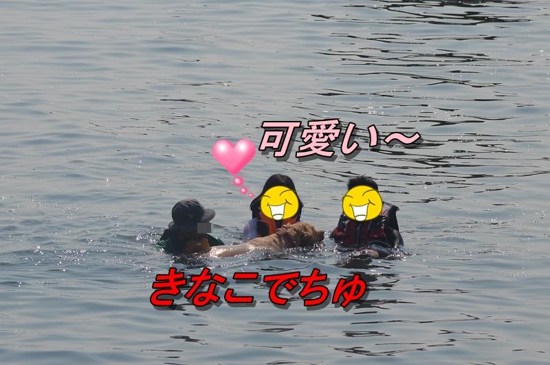 DSC_0837_20130813203924c26.jpg