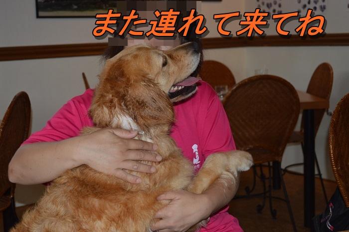 DSC_0962_20130717215833.jpg