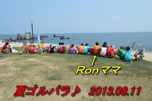 DSC_0998_2013081123061027c.jpg