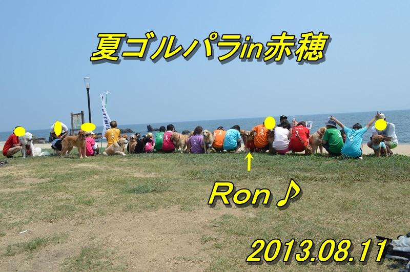 DSC_1000_20130815215744a64.jpg