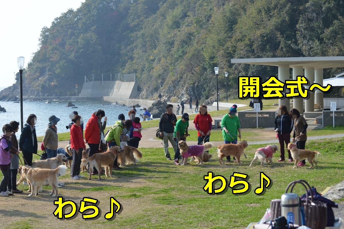 DSC_1042-019.jpg