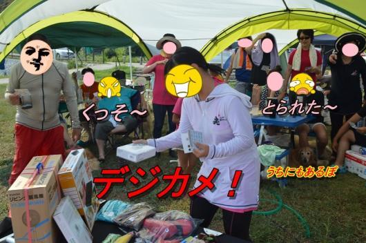 DSC_1045_2013081623373645f.jpg