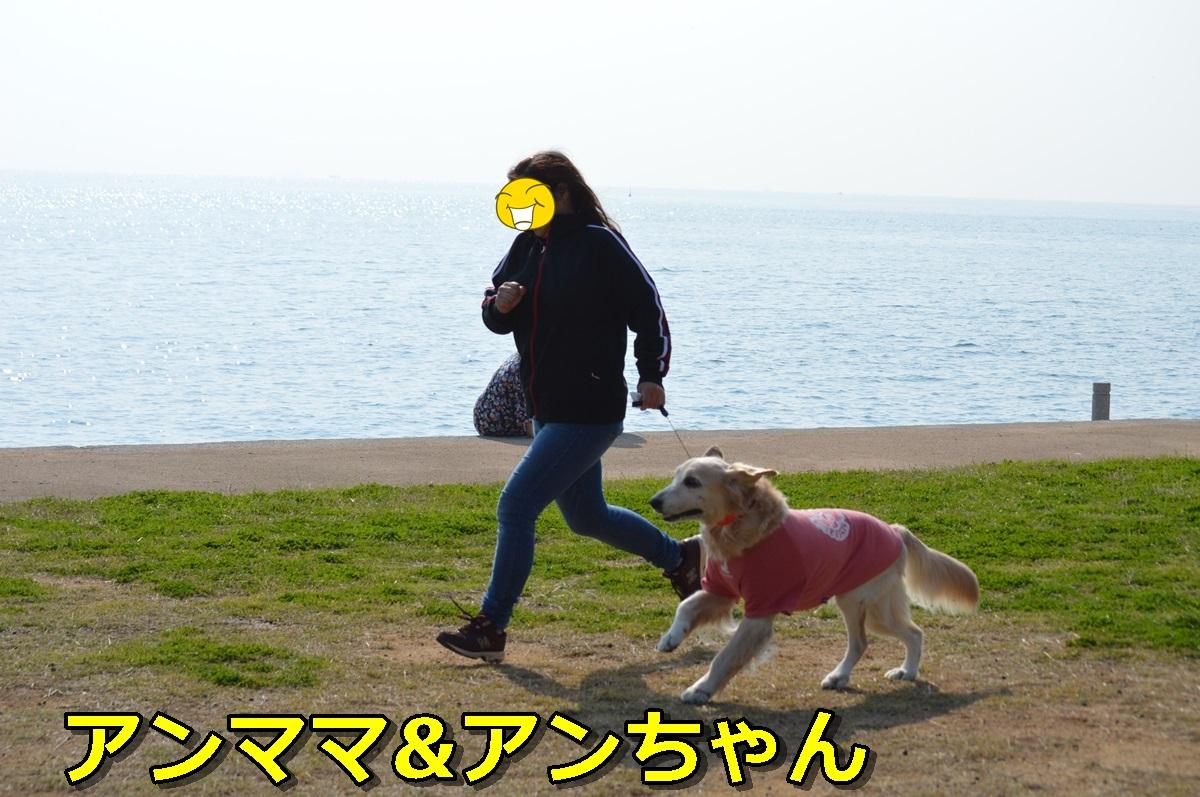 DSC_1055-021.jpg