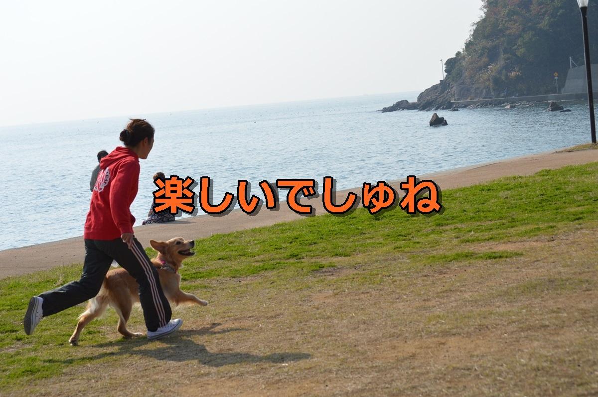 DSC_1118-037.jpg