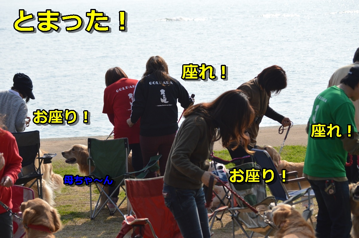 DSC_1177-006.jpg
