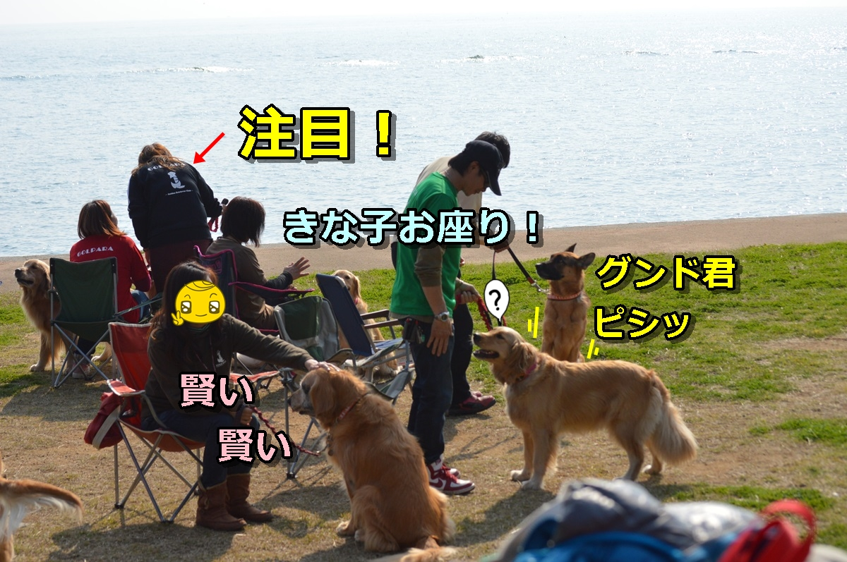 DSC_1180-009.jpg