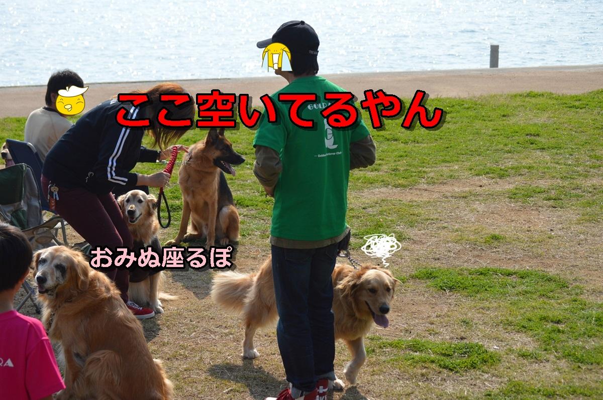 DSC_1182-011.jpg