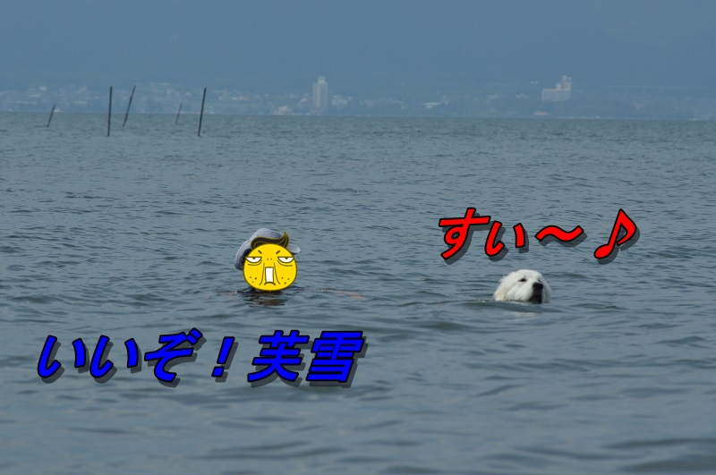 DSC_1183.jpg