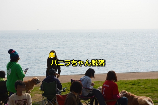 DSC_1185-014.jpg