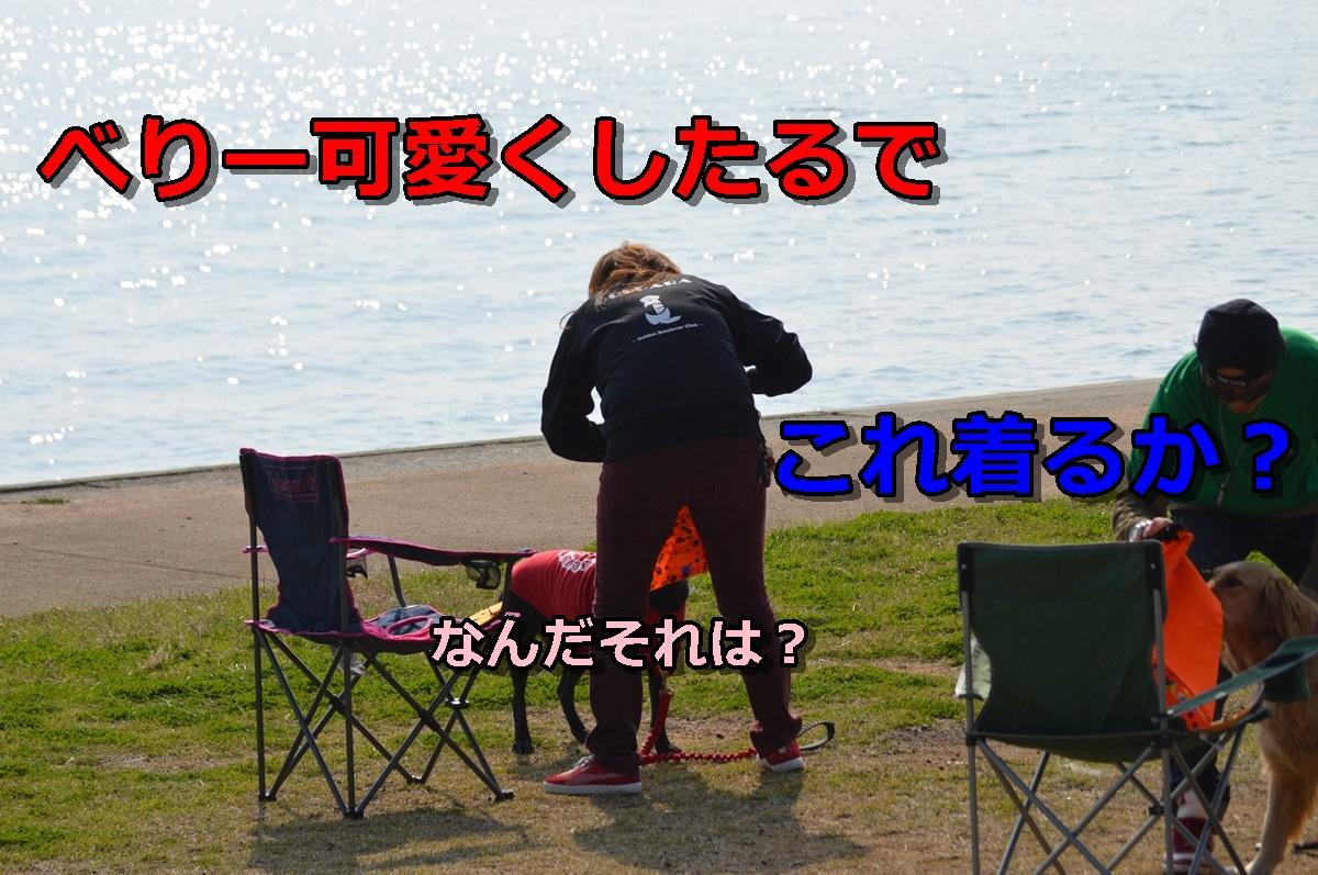 DSC_1274-001.jpg