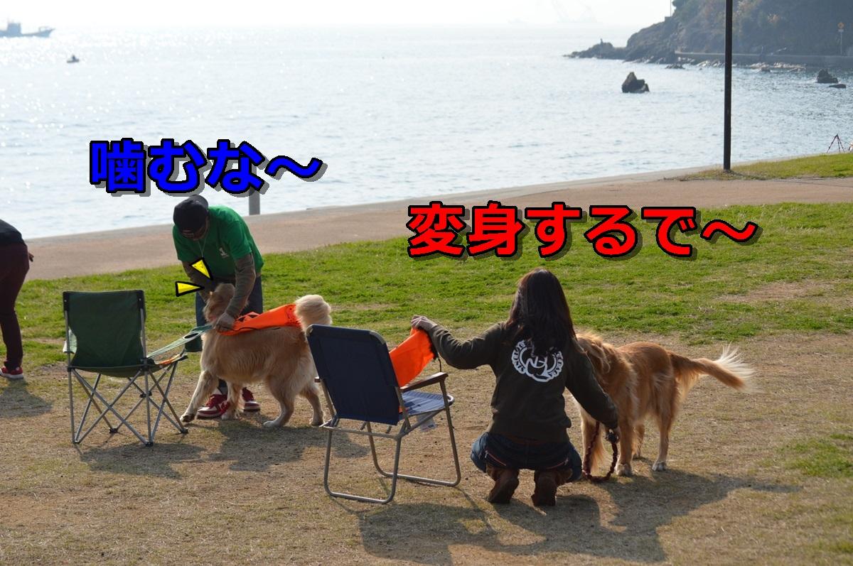 DSC_1275-002.jpg