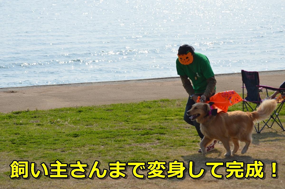 DSC_1279-006.jpg