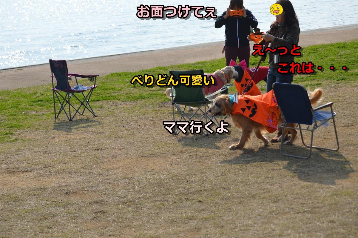 DSC_1280-007.jpg