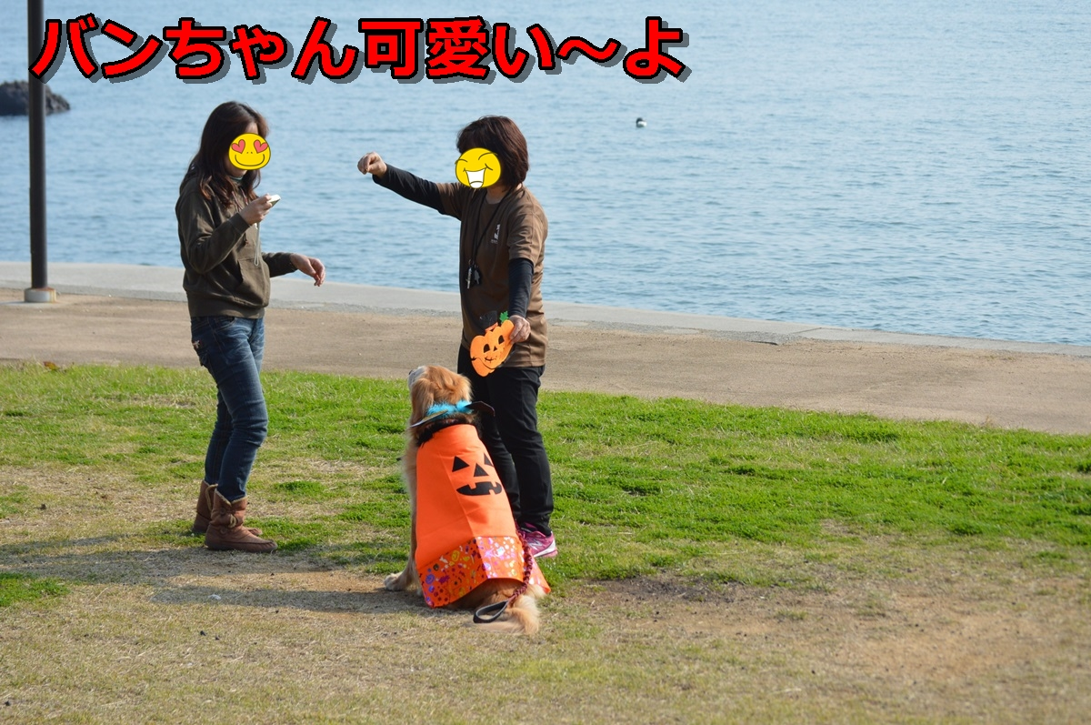 DSC_1291-018.jpg